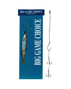 Big Game Choice Live Bait Rig